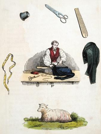 tailor-c1845