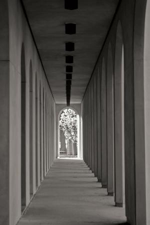 tammy-putman-the-walkway