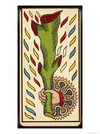 tarot-the-ace-of-clubs