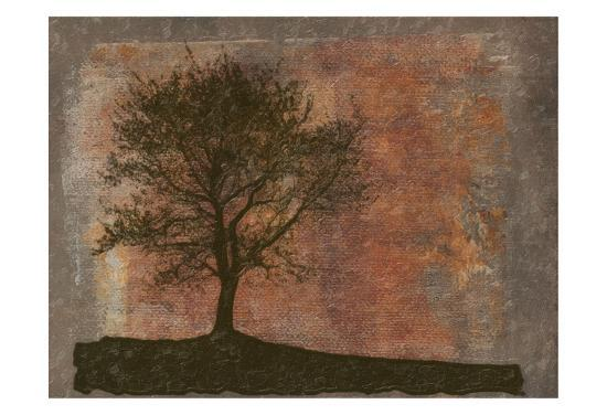 taylor-greene-tree-horizon
