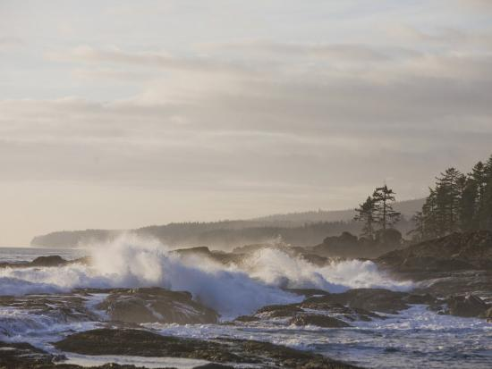 taylor-s-kennedy-stormy-day-on-vancouver-island-s-west-coast