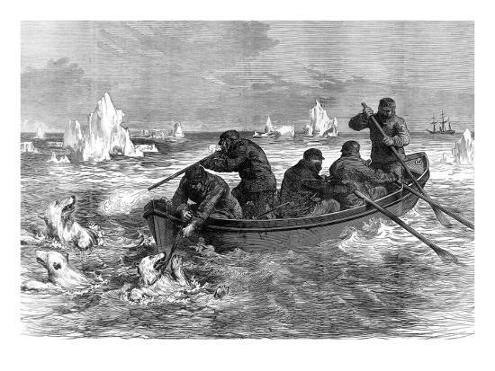 the-crew-of-the-pandora-hunting-polar-bears-1875