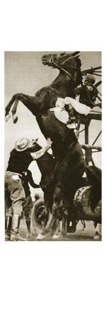 the-jockey-herbert-loses-control-of-his-horse-at-the-start-of-a-race-in-new-york
