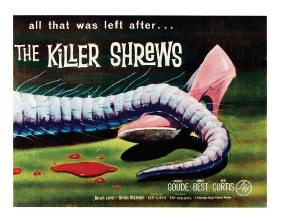 the-killer-shrews-1959-i