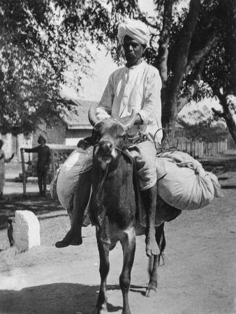 the-laundry-man-india-late-19th-or-early-20th-century