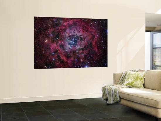 the-rosette-nebula