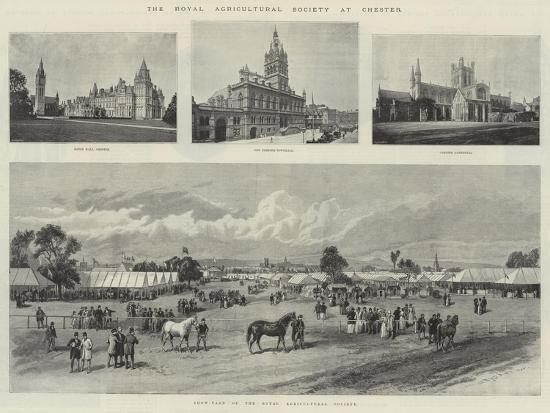 the-royal-agricultural-society-at-chester