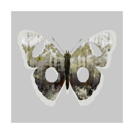 the-studio-painted-butterfly-2