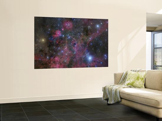 the-vela-supernova-remnant