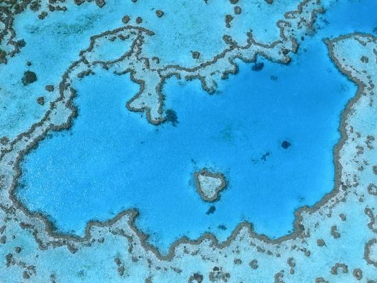 theo-allofs-aerial-view-of-great-barrier-reef