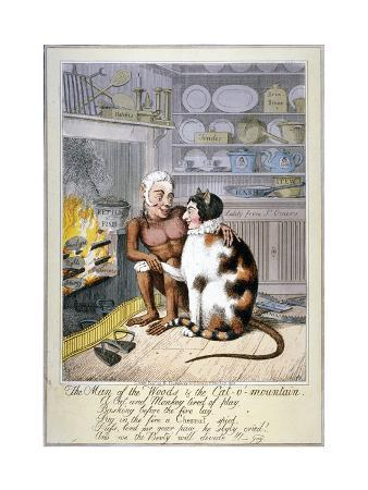 theodore-lane-the-man-of-the-woods-and-the-cat-o-mountain-1821