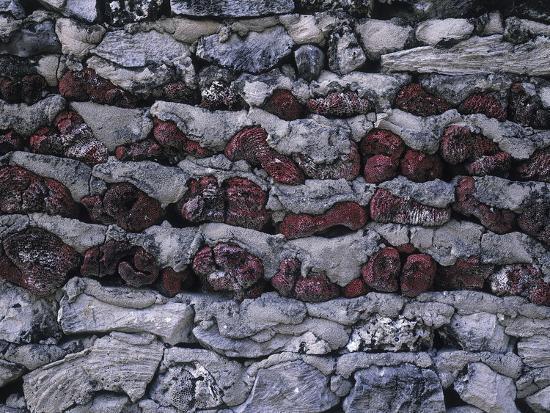 mauer steine korallen mauerwerk natursteinmauerwerk gestein struktur photographic print by. Black Bedroom Furniture Sets. Home Design Ideas