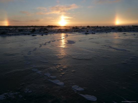 thorsten-milse-sun-dogs-polar-bear-tracks-churchill-hudson-bay-manitoba-canada