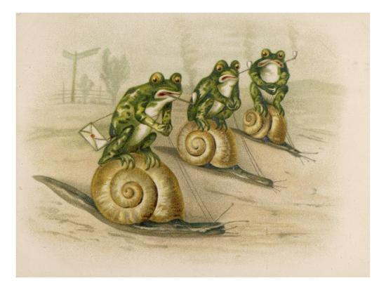 three-frogs-mounted-on-snails-race-each-other