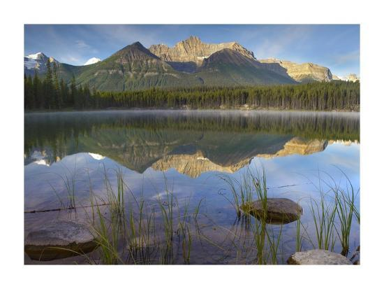 tim-fitzharris-bow-range-and-boreal-forest-reflected-in-herbert-lake-banff-national-park-alberta-canada