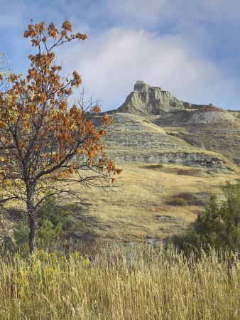 tim-fitzharris-fall-foliage-in-south-unit-theodore-roosevelt-national-park-north-dakota