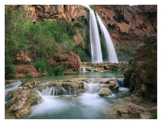 tim-fitzharris-havasu-creek-lined-with-cottonwood-trees-havasu-falls-grand-canyon-arizona