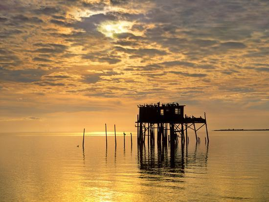 tim-fitzharris-sunset-over-pelicans-perched-on-a-shack-cedar-key-florida-usa