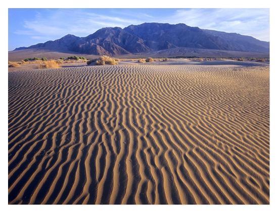 tim-fitzharris-tucki-mountain-and-mesquite-flat-sand-dunes-death-valley-national-park-california