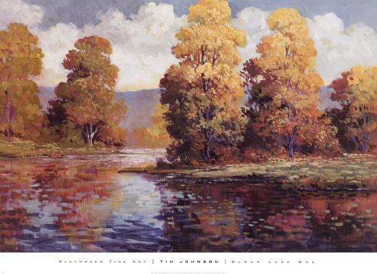 tim-johnson-clear-lake-i