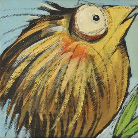 tim-nyberg-feather-bird-25