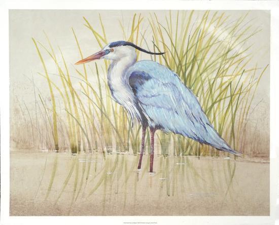 tim-o-toole-heron-reeds-ii