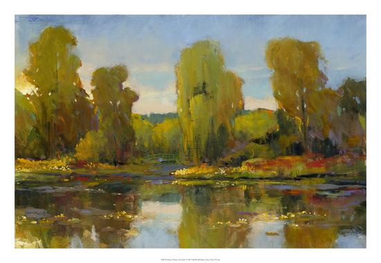 tim-o-toole-monet-s-water-lily-pond-i