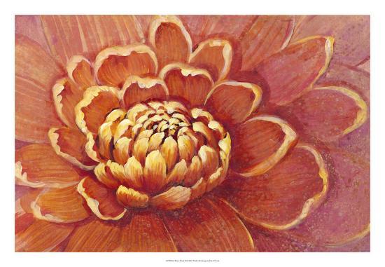 tim-otoole-micro-floral-ii