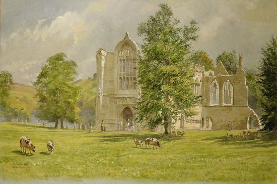 tim-scott-bolton-bolton-abbey-1988