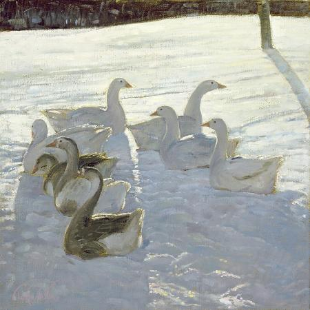 timothy-easton-geese-against-the-light