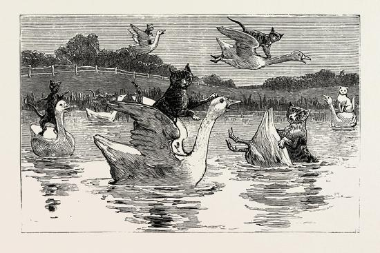 to-show-them-his-poultry-he-turned-them-all-loose-1890
