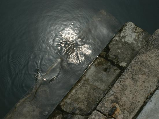 todd-gipstein-close-view-of-stone-steps-leading-into-the-grand-canal