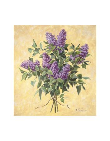 todd-telander-lilac-season-ii