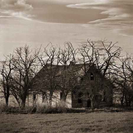 tom-marks-abandoned-house-surrounded-by-trees