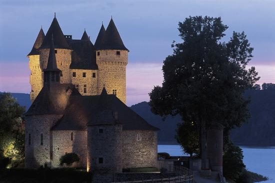 tree-near-a-castle-val-castle-auvergne-france