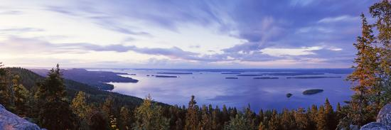 trees-along-a-lake-lake-pielinen-koli-national-park-lieksa-finland