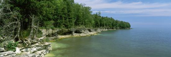 trees-at-the-lakeside-cave-point-county-park-lake-michigan-door-county-wisconsin-usa