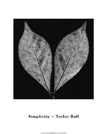 trefor-ball-simplicity