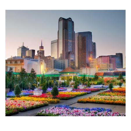trey-ratcliff-downtown-dallas-from-the-flower-market