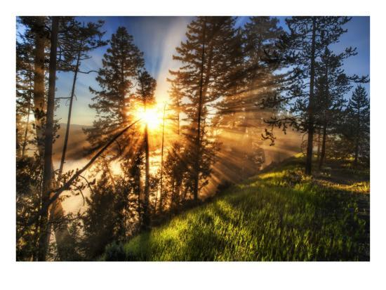 trey-ratcliff-morning-coffee-yellowstone-fog