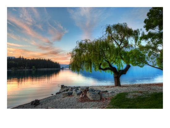 trey-ratcliff-tree-at-the-serene-lake