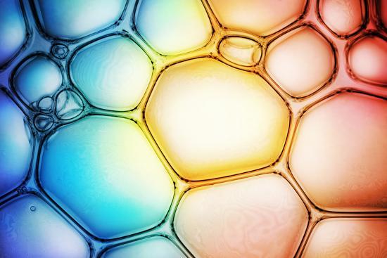 triff-bubble-background