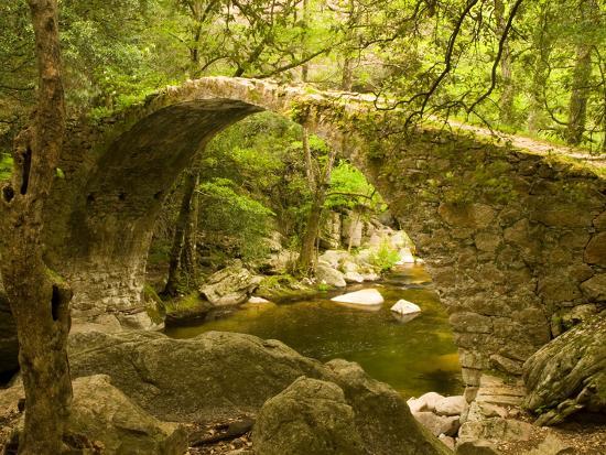 trish-drury-genoan-bridge-in-vegetation-of-gorges-de-spelonca-ponte-de-zaglia-corsica-france
