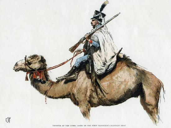 trooper-of-the-camel-corps-of-the-first-napoleon-s-egyptian-army-1790s