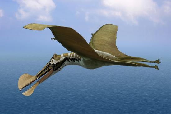 tropeognathus-mesembrinus-a-large-pterosaur-from-the-late-cretaceous-period