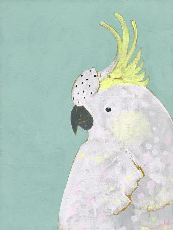 tropical-birds-cockatoo