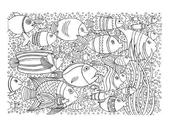 tropical-fish-coloring-art