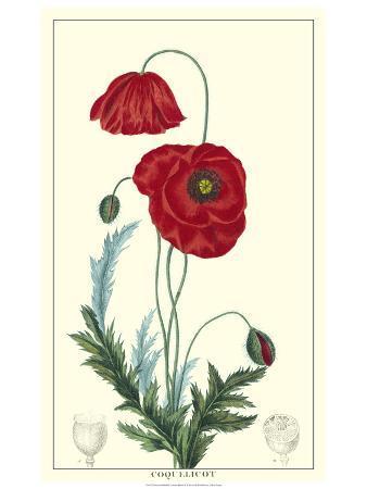 turpin-non-embellished-crimson-bloom-ii
