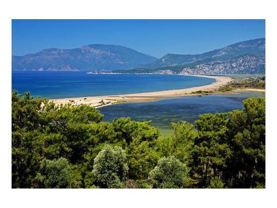 turtle-beach-iztuzu-plaji-near-dalyan-lycia-mugla-province-turkey