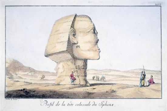 tuscher-hafniae-great-sphinx-head-in-profile-18th-century